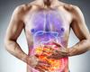 IBD's: de slaagkansen van de behandeling verbeteren