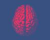 Nederlands ziekenhuis is oorzaak van invloed op hersenen van covid op het spoor