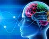 Meditatie en geneeskunde delen eenzelfde voorouder. Is het een geneesmiddel of een techniek?