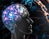 Sclérose en plaques: l'inflammation cause la perte neuronale (étude finalisée à St-Luc)