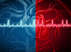 Atrial high-rate episodes