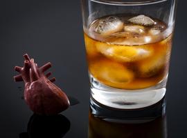 VKF: moet voorafgaand aan elke andere interventie het alcoholgebruik worden verminderd?