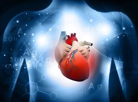La compréhension des différences cellulaires et moléculaires entrel'ICFER et l'ICFEP est essentielle pour développer de nouvelles thérapies