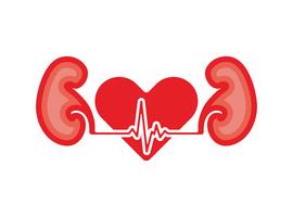Rol van SGLT2-remmers (gliflozines) bij patiënten met nierinsufficiëntie