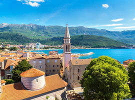 15th EADV spring symposium - Le printemps à Budva