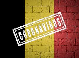 Un an de confinement : quelques dates qui ont marqué la vie des Belges  (chronologie)