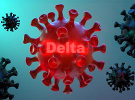 Le variant Delta ne s'en prend pas spécifiquement aux enfants, selon l'OMS