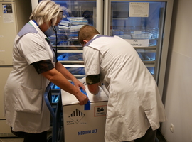 Les hôpitaux belges ont reçu 676.000 vaccins au total
