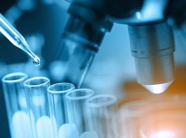 De 7 à 10 jours entre un test et le séquençage génomique