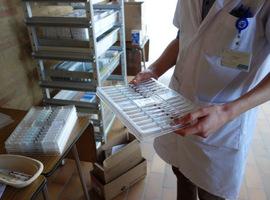 OLVZ Aalst tevreden over verbetering vaccintransport die UA ontwikkelde