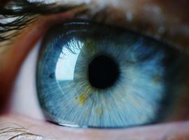 UZ Gent start met nieuwe gentherapie tegen blindheid