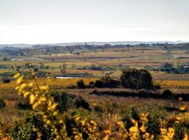 Zalige Faugères, een deugniet uit de Languedoc