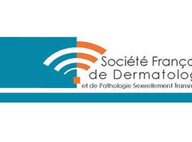Editie 2012 van de 'Journées dermatologiques de Paris'