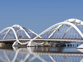 23e congres van de EADV 'Building Bridges' (Amsterdam, oktober 2014)