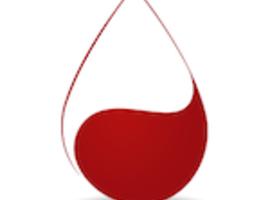 Syndrome coronarien aigu (SCA): l'anémie joue les trouble-fêtes