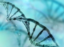 Le Global Parkinson's Genetics Programme