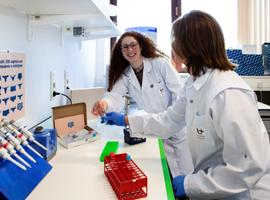 Gezonde Lactobacillus-bacterie heerst in vagina's in Vlaanderen (UZA)