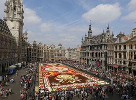 Un son et lumière à la Grand-Place de Bruxelles remplacera le traditionnel Tapis de fleurs