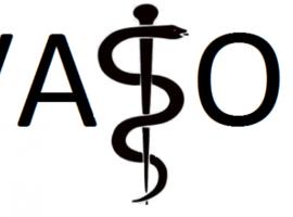 VASO-AMSF vervelt tot puur Vlaams Vaso