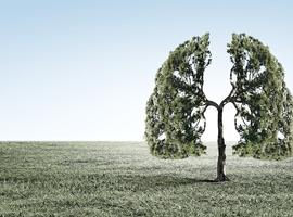 L'osimertinib dans le cancer du poumon non à petites cellules réséqué EGFR-muté