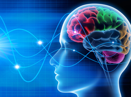 KU Leuven-onderzoekers registreren hersengolven met experimenteel gehoorimplantaat