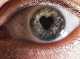 AI algoritmes om hart- en oogziekten op te sporen