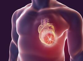 La FDA ajoute un avertissement pour infections cardiaques à la notice des vaccins à ARNm