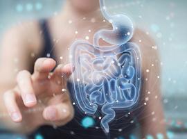 Het darmmicrobioom is geassocieerd met fenotypes in multiple sclerose