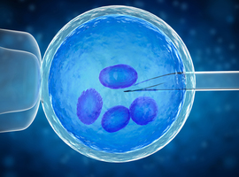 Donoranonimiteit bij medisch begeleide voortplanting: opnieuw ter discussie