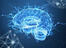 Detectie van neurodegeneratieve processen bij patiënten met multiple sclerose vooraleer irreversibele hersenschade optreedt