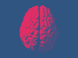 L'Institut Jules Bordet collabore avec OncoDNA pour étudier la biologie des métastases cérébrales