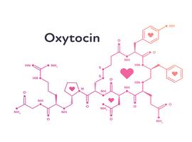 Toedienen van knuffelhormoon oxytocine trekt ook de productie ervan op gang