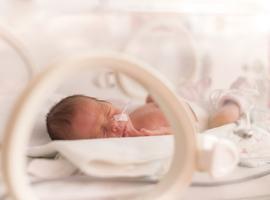 Premature baby's ontwikkelen een adequate respons op de meeste standaard vaccins