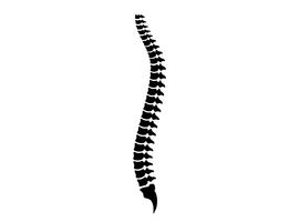 Online ID Spine 2020