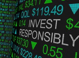 Impactbeleggen: een vorm van duurzaam beleggen met een meetbaar positief effect op milieu of maatschappij