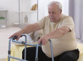 Relation chez les séniors entre obésité et insuffisances en certains micronutriments