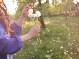 La saison du rhume des foins démarre, avec les premiers pollens de graminées (Sciensano)