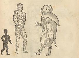 Geschiedenis: de vreemde legende  van Cola Pesce