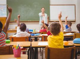 Anafylaxie: aanpak binnen de scholengemeenschap of hoe de juiste balans te vinden tussen de richtlijnen en het dagelijkse leven
