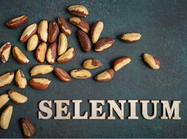 Le sélénium,à la justedose…