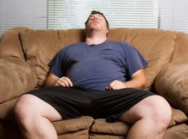 Obésité et sommeil… Du rôle du système endocannabinoïde