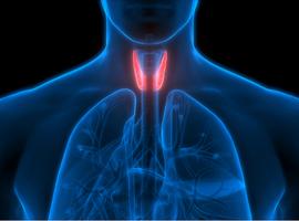 La prise en charge post-opératoire du carcinome différencié de la thyroïde