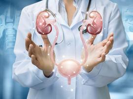 Comment intervenir en cas de calcul de l'uretère?