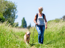 Activité physique et pression artérielle