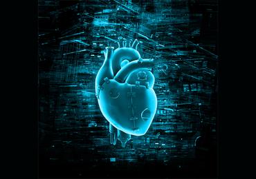 4D-scan toont artsen virtueel hoe hart reageert op nieuwe hartklep