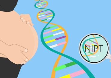 Le test prénatal pour dépister la trisomie 21 fiable aussi pour une grossesse gémellaire