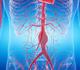 L'essentiel de 2020: aorte et vaisseaux périphériques