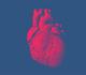 Les mécanismes sous-jacents communs au cancer et à l'insuffisance cardiaque